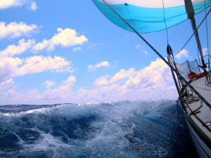 Sailing with wind Image